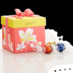 spring-lindor-classic-folding-gift-box_main_450x_S000574-1